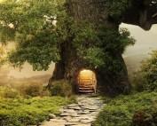 Árvore Portal