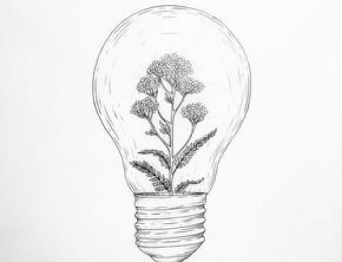 Da admiração à frustração  na implementação de ideias e estratégias em nossos trabalhos e serviços do bem
